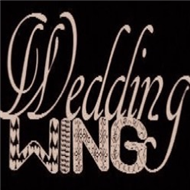 Wedding Wing Officiant - Robin Cohen
